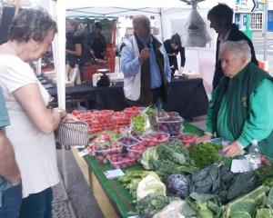 Styan veg stall